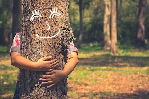 Nachhaltige Naturmöbel und ökologisches Massivholz